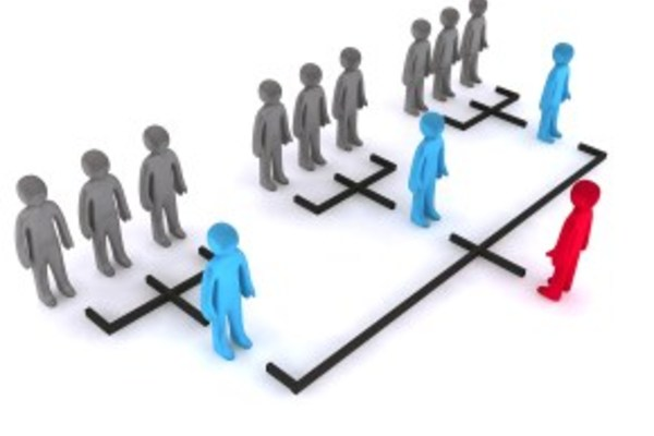 Card business consulting for organisational structure
