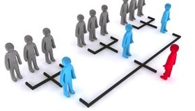 Medium business consulting for organisational structure